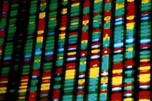 Ilustračný obrázok - DNA